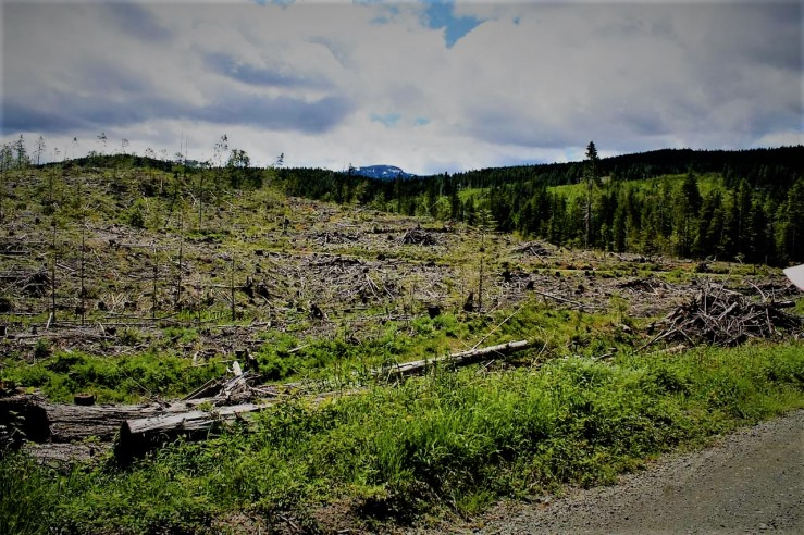 Rural British Columbia; Photo by Dr. John Bodner